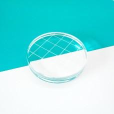 "Catherine Pooler - Acrylic Grid Stamping Block 2-3/4"" Round"