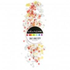 Catherine Pooler - Salt Lake City Sequin Mix